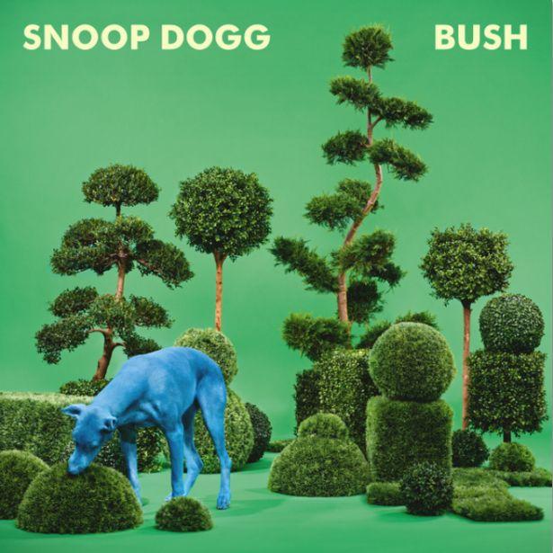 rsz_snoop-dogg-bush