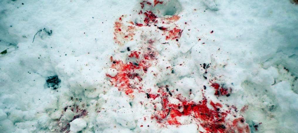 Tragovi krvi na snegu, arhiva DB-a