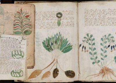Vojnicev-manuskript